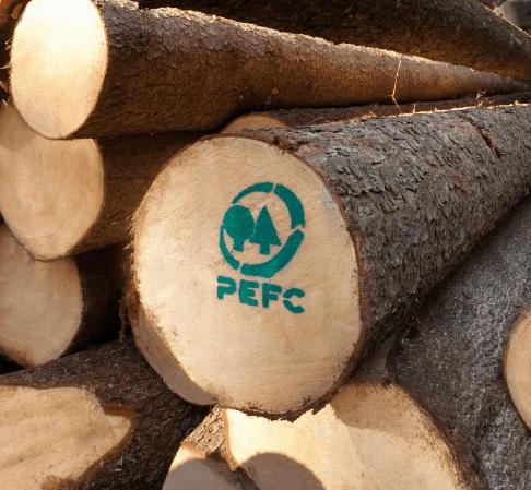 PEFC Holz für deinen Stuhl